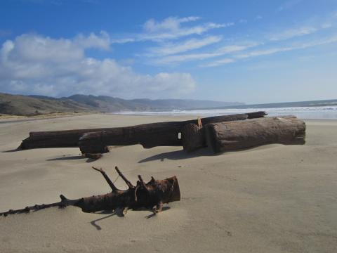 Photo : immense plage à Point Reyes
